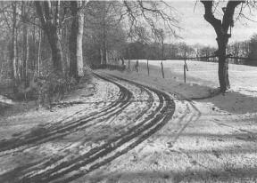Vej ved Moesgård, med den sidste sne.