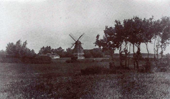 Pedholt Mølle set fra syd mod Korsbakken. Møllen brændte ca. 1913. Det er alt hvad vi har af oplysninger på Egnsarkivet. Hvis nogen kender noget til møllens historie vil vi være taknemmelige for alle slags oplysninger.