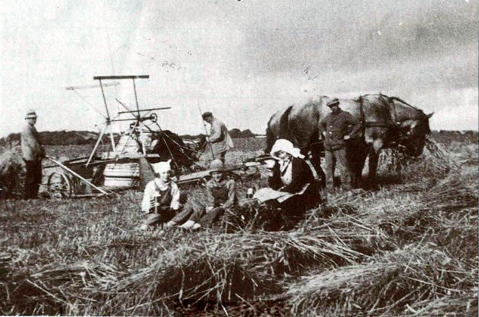 Et hyggeligt høstbillede fra Fløjstrup Vestergaard, omkring 1930. Når kornet blev ophøstet, kom madmor, tjenestepige og børn ud i marken med noget lækkert til høstfolkene. Man satte sig på negene og drak kaffe, spiste f.eks. æbleskiver og bagefter friskbagt kage. Ophøstningen blev fejret. Når kornet var i hus blev høstgildet holdt. I baggrunden ses Eske Anton Pedersen, Søren Nielsen og Viggo Jensen. Foran er det Karna Rasmussen, Østerskov, Agnes Pedersen og Karen Pedersen, der er kommet med kaffe til høstfolkene.
