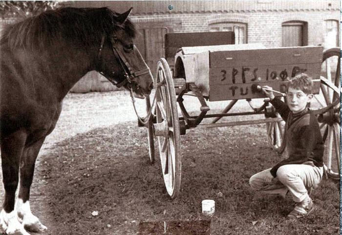 På Vejlgaarden i Malling gør 10-årige Stig Kristiansen klar til at tjene nogle lommepenge. Tre personer kan han køre med ad gangen - til 10 øre pr. person. Han tjente nogle kroner ved kammeraterne. Hesten, der hedder Lotte, ser ud, som om den tænker på, hvad de nu skal til. Det var i oktober 1960.